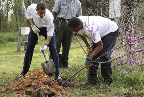 obama_planting_trees_z.jpg