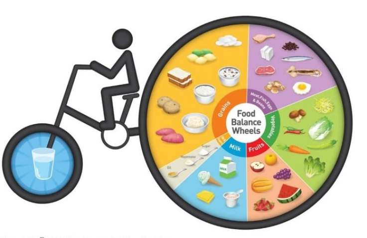 heres-what-food-guides-look-like-around-the-world-6